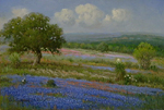Concerto in Blue by Cal Gaspard part of our Bluebonnet Gallery